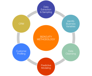Analytics - BizAcuity Methodology